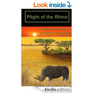 Plight of the Rhino