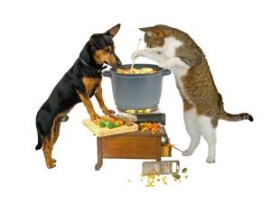 Dog-Cat-Cooking_dreamstime_s_24255835