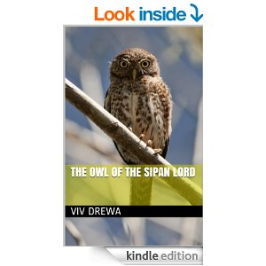 The Owl of the Sipan Lord by Viv Drewa