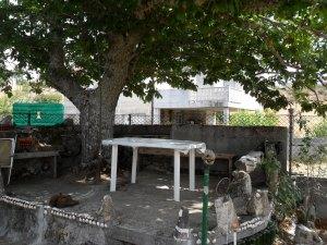 Nuestro comedor al aire libre en Paradaseca. No sé cómo estará porque mi tío me dijo que una tormenta había destrozado el castaño
